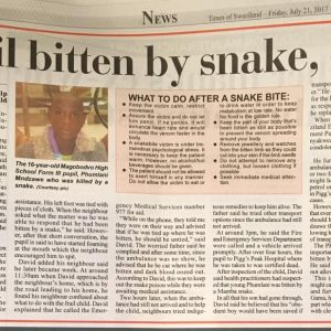 newspaper articles 2