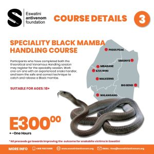 Course 3 Speciality Black Mamba Handling Course
